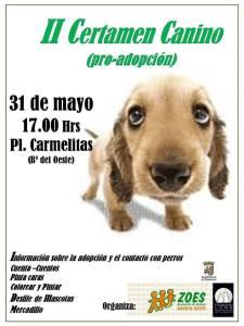 Certamen canino pro-adopción