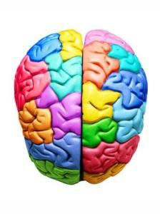 Inteligencias Múltiples con El Cole de la Alegría