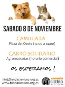 Solidarios con El Hocico el 8 de noviembre