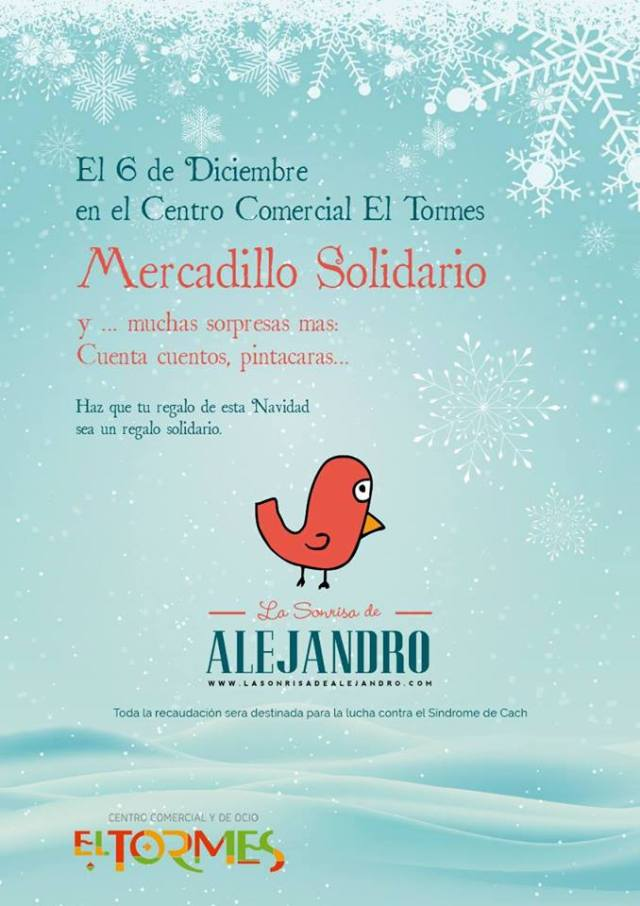Mercadillo Solidario La Sonrisa de Alejandro