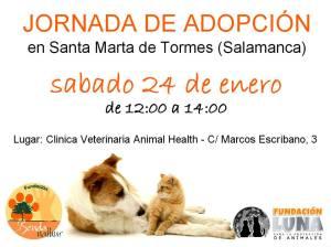 Jornada de adopción en Santa Marta el 24 de enero